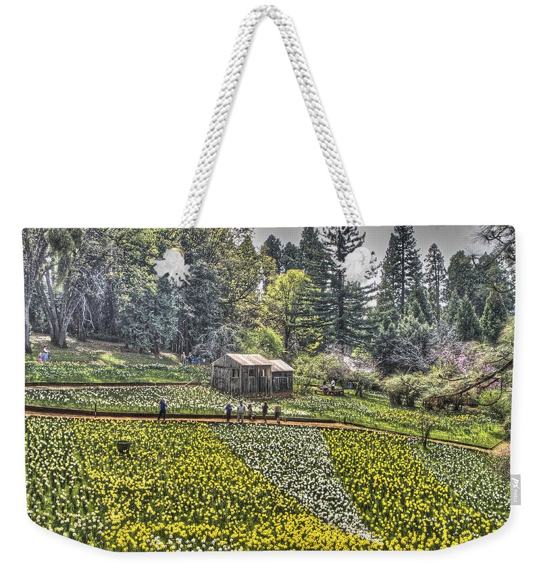 Amador Weekender Tote Bag featuring the photograph Visitors On Daffodil Hill by SC Heffner