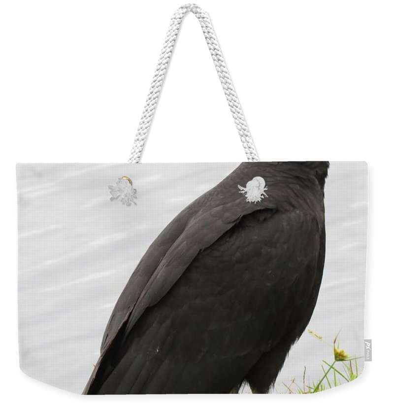 Vulture Weekender Tote Bag featuring the photograph Vulture by Zina Stromberg