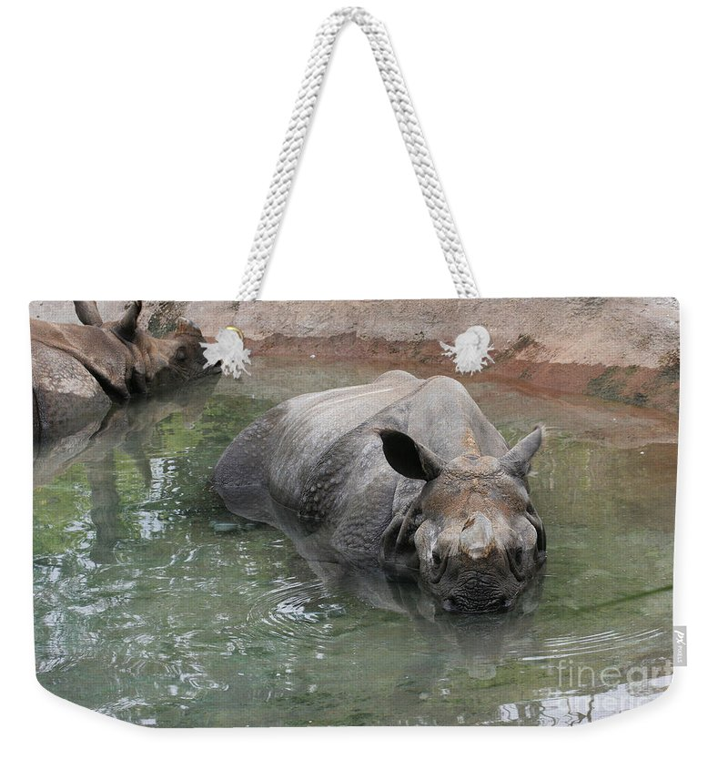 Indiana Rhinoceros Weekender Tote Bag featuring the photograph Wading Rhinos by Judy Whitton