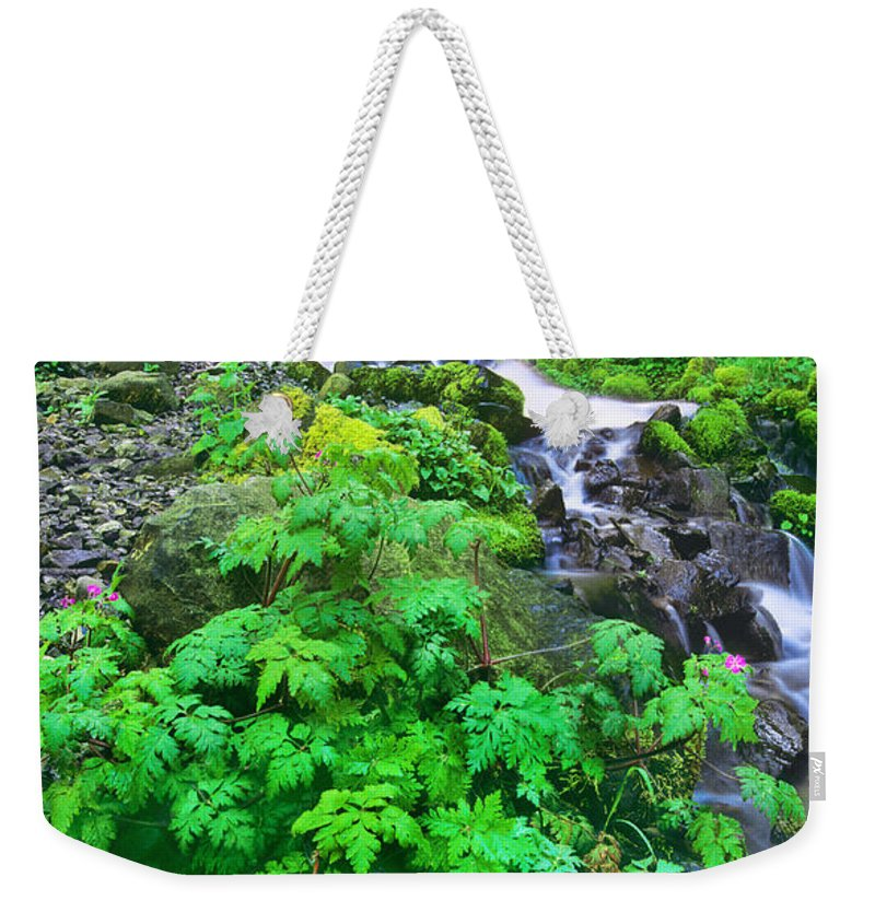 North America Weekender Tote Bag featuring the photograph Wahkeena Falls In The Columbia River Gorge by Dave Welling