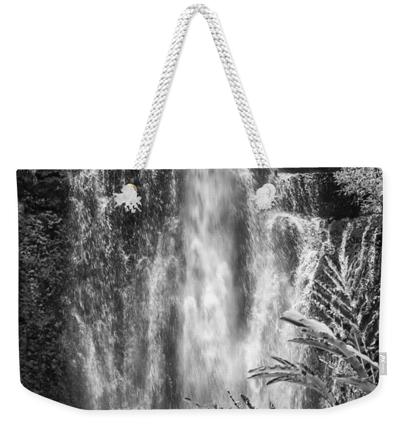 Wailua Falls Road To Hana Maui Hawaii Waterfall Waterfalls Water Landscape Landscapes Tree Trees Vine Vines Fern Ferns Nature Waterscape Waterscapes Black And White Weekender Tote Bag featuring the photograph Wailua Waterfall 2 by Bob Phillips