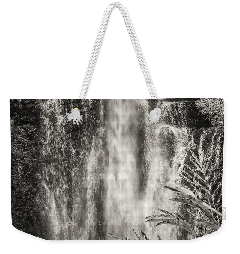 Wailua Falls Road To Hana Maui Hawaii Waterfall Waterfalls Water Landscape Landscapes Tree Trees Vine Vines Fern Ferns Nature Waterscape Waterscapes Black And White Sepia Weekender Tote Bag featuring the photograph Wailua Waterfall 3 by Bob Phillips