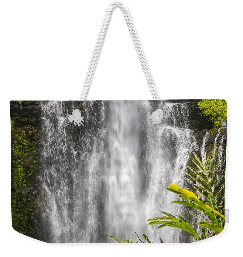 Wailua Falls Road To Hana Maui Hawaii Waterfall Waterfalls Water Landscape Landscapes Tree Trees Vine Vines Fern Ferns Nature Waterscape Waterscapes Weekender Tote Bag featuring the photograph Wailua Waterfall by Bob Phillips