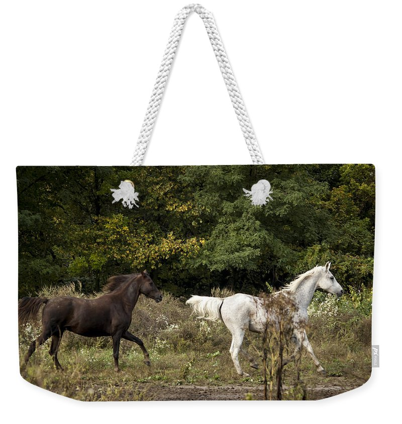 Horse Weekender Tote Bag featuring the photograph Wait For Me by Annette Persinger