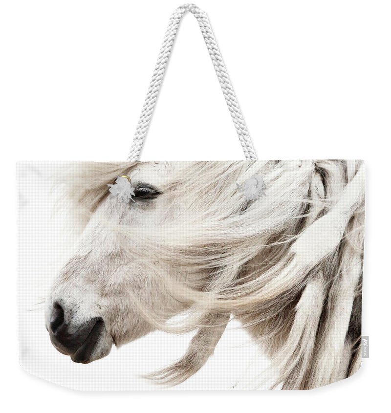 Wind Weekender Tote Bag featuring the photograph Waiting For Spring by Gigja Einarsdottir