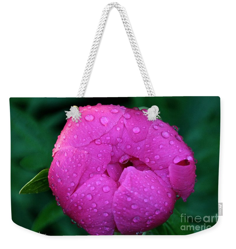 Flower Weekender Tote Bag featuring the photograph Waiting For The Sun by Susan Herber