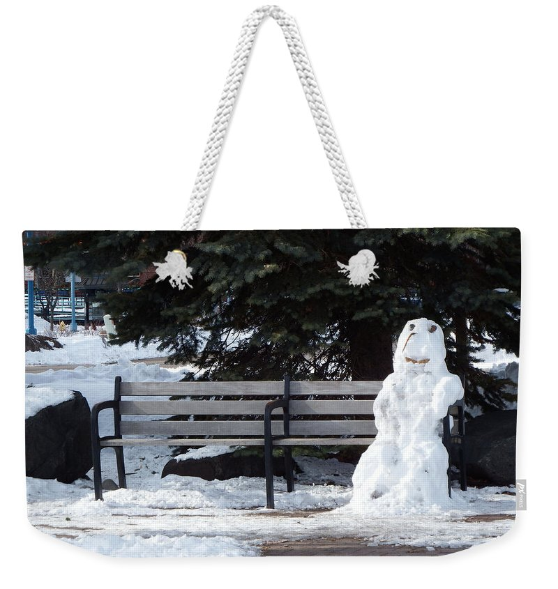 Snow Weekender Tote Bag featuring the photograph Waiting On Spring by Alison Gimpel