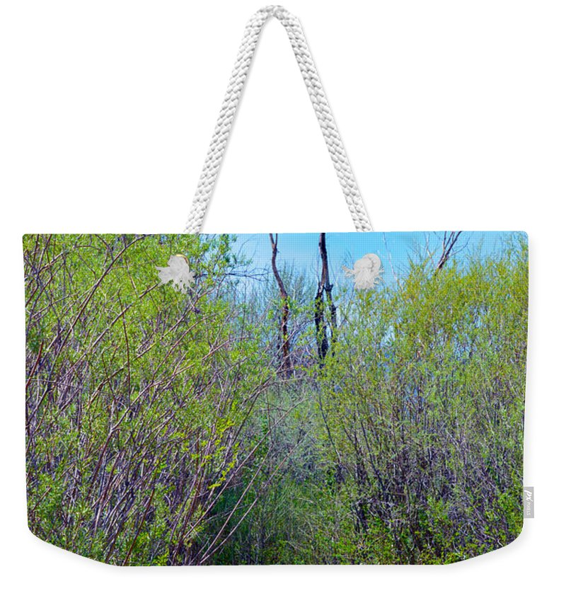 Son Weekender Tote Bag featuring the photograph Walking The Ox Bow by Brent Dolliver