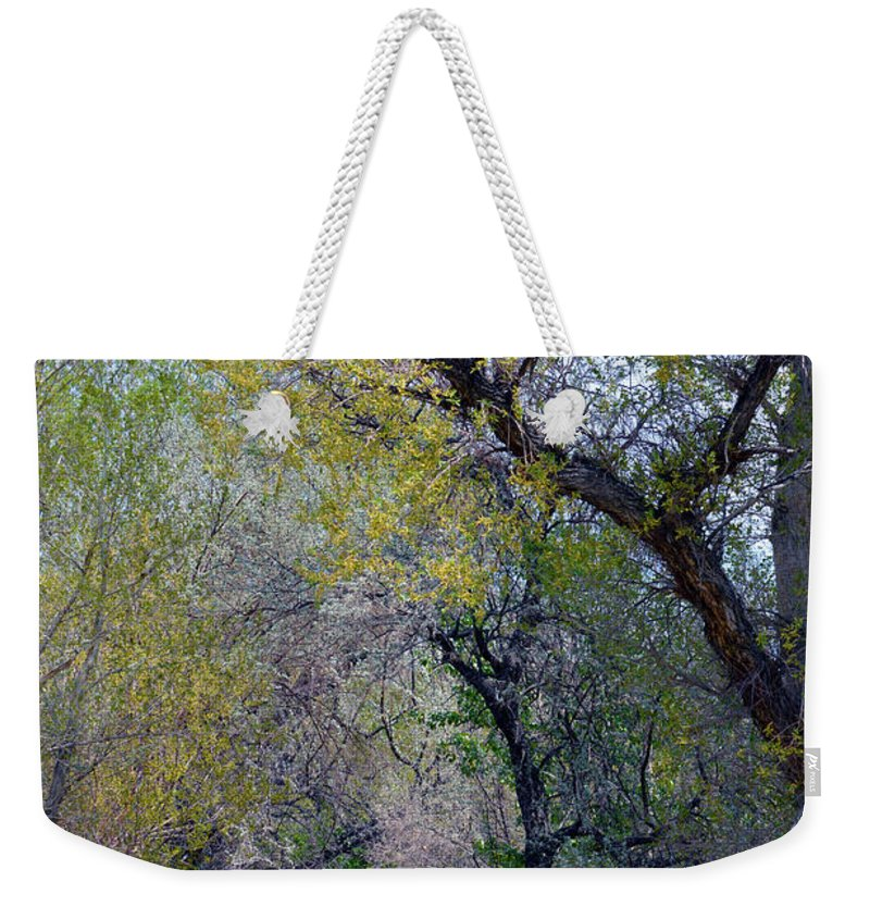 Man Weekender Tote Bag featuring the photograph Walking The Path by Brent Dolliver