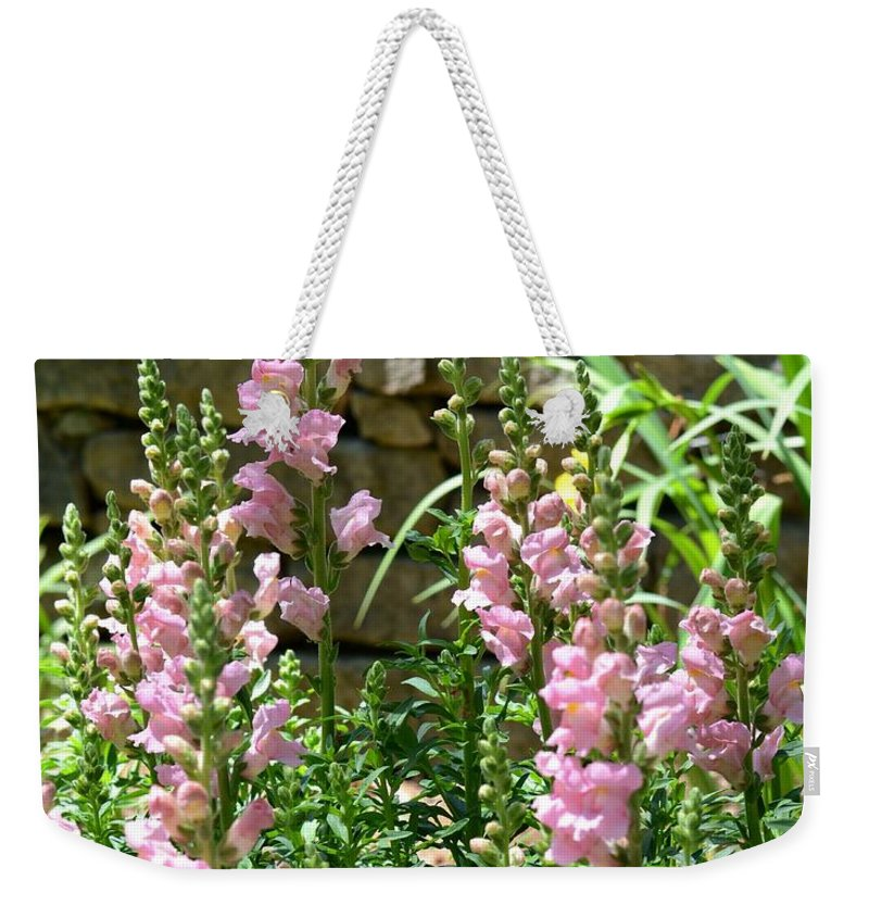Wall Of Snapdragons Weekender Tote Bag featuring the photograph Wall Of Snapdragons by Maria Urso