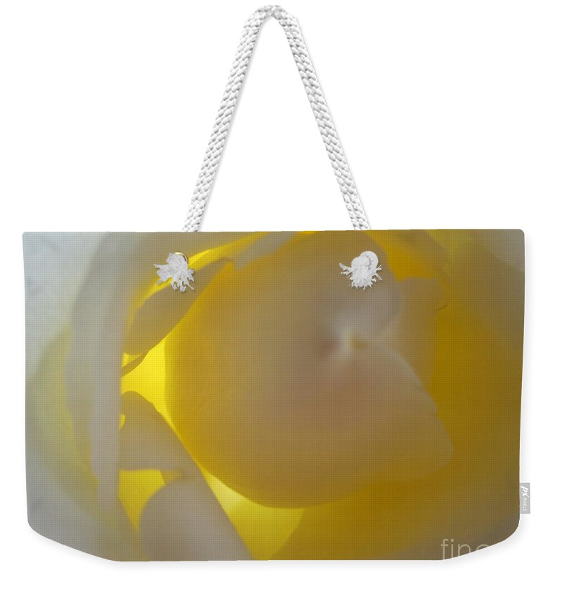 Floral Weekender Tote Bag featuring the photograph Warm Glow White Rose by Tara Shalton