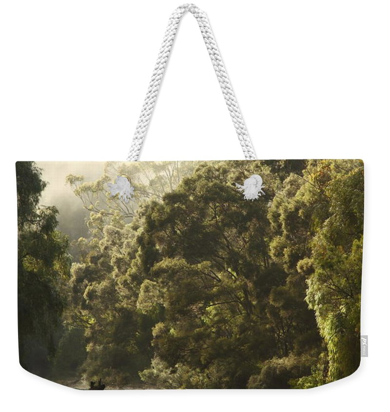 Warren River Weekender Tote Bag featuring the photograph Warren River - Western Australia 2am-113012 by Andrew McInnes