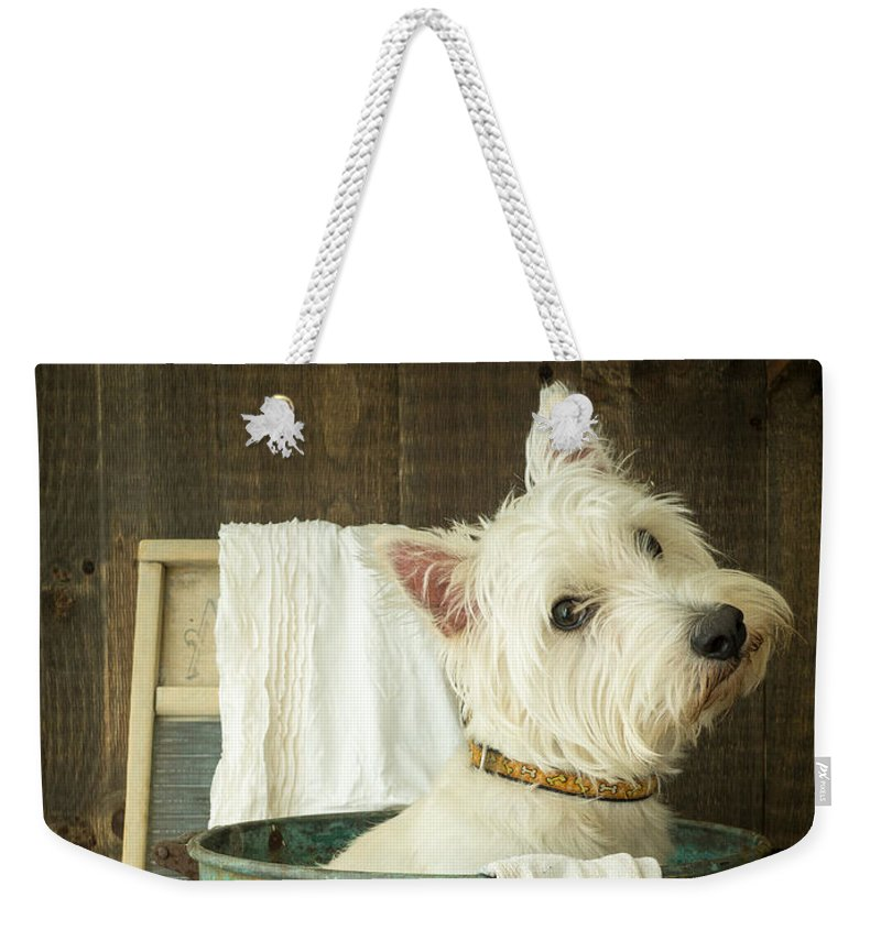 Dog Weekender Tote Bag featuring the photograph Wash Day by Edward Fielding