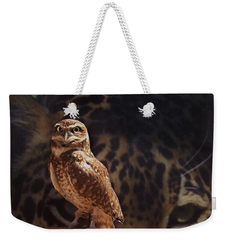 Cheetah Weekender Tote Bag featuring the photograph Watch Your Back by Steve Ondrus