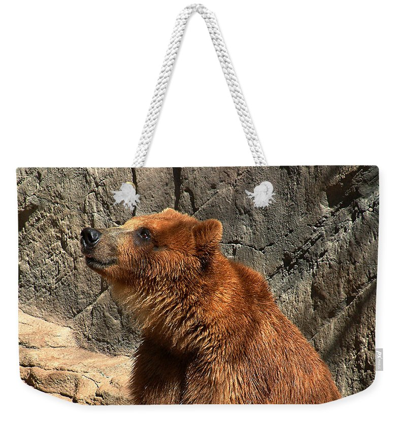 Bear Weekender Tote Bag featuring the photograph Watching The Sun Set by RC DeWinter