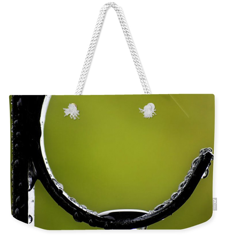 Interior Design Weekender Tote Bag featuring the photograph Water Ice Iron by Lisa Knechtel
