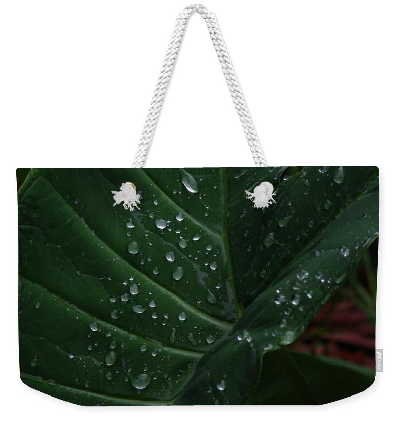 Patzer Weekender Tote Bag featuring the photograph Water In My Ear by Greg Patzer