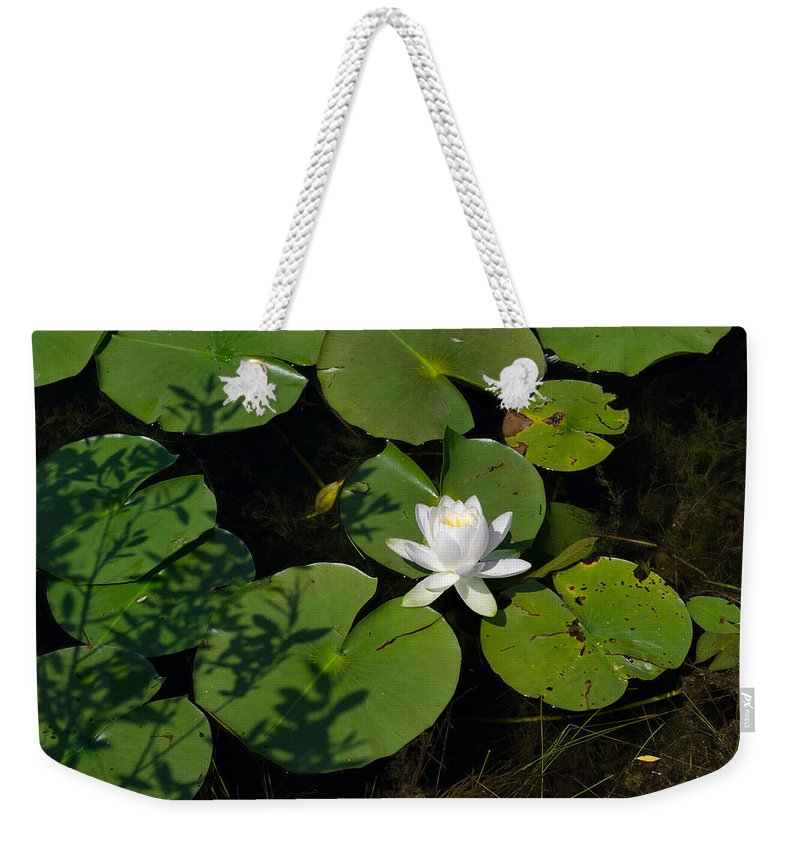 Water Lily Weekender Tote Bag featuring the photograph Water Lily by Jim Shackett