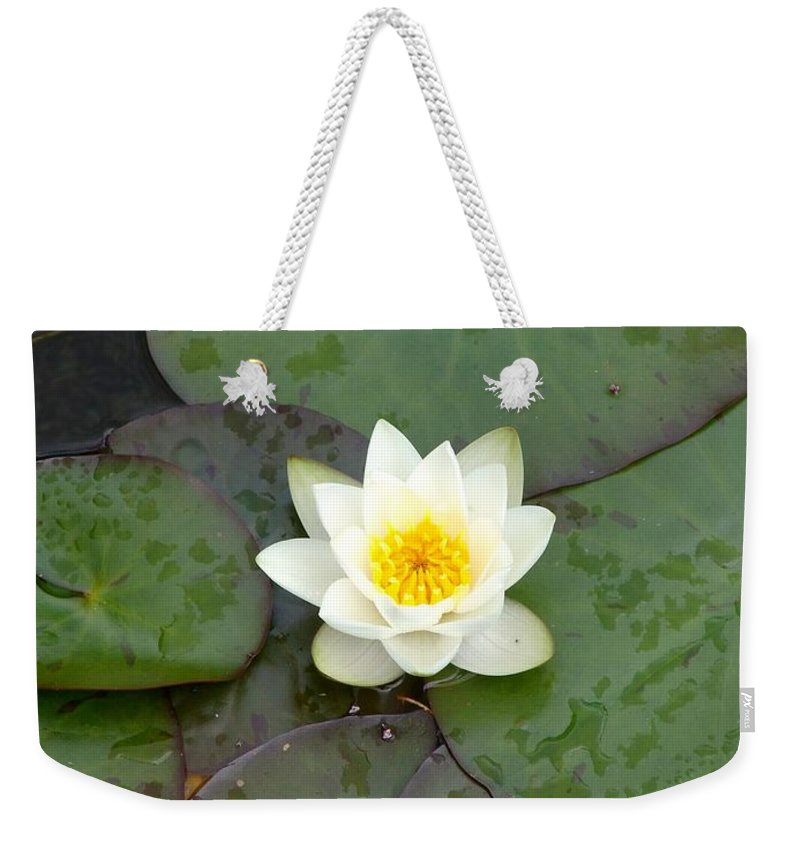 Waterlily Weekender Tote Bag featuring the photograph Water Lily - White by Ian Mcadie