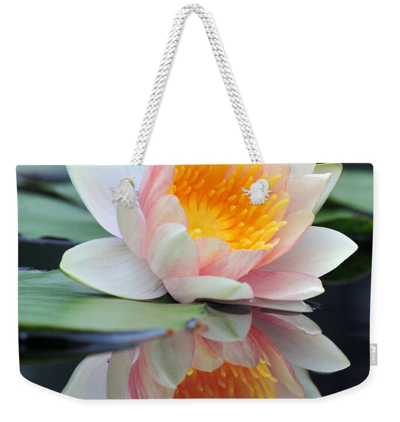 Lily Weekender Tote Bag featuring the photograph water lily 45 Water Lily with Reflection by Terri Winkler