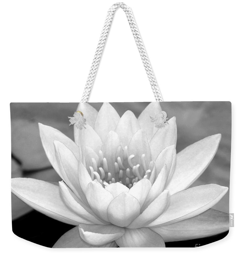 Landscape Weekender Tote Bag featuring the photograph Water Lily In Black And White by Sabrina L Ryan