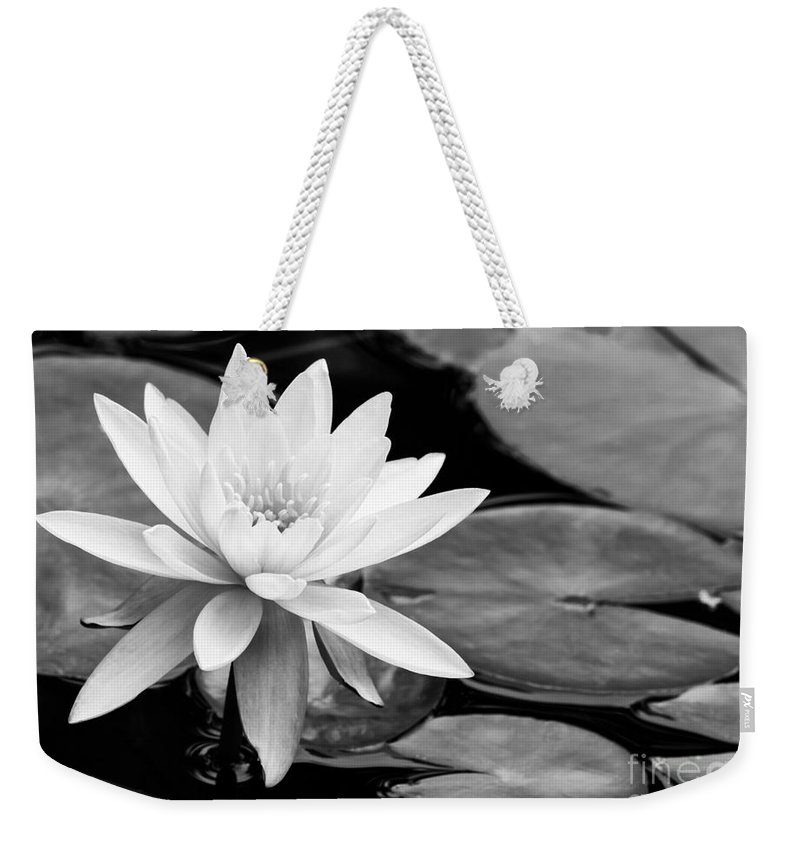 Landscape Weekender Tote Bag featuring the photograph Water Lily In The Lily Pond by Sabrina L Ryan