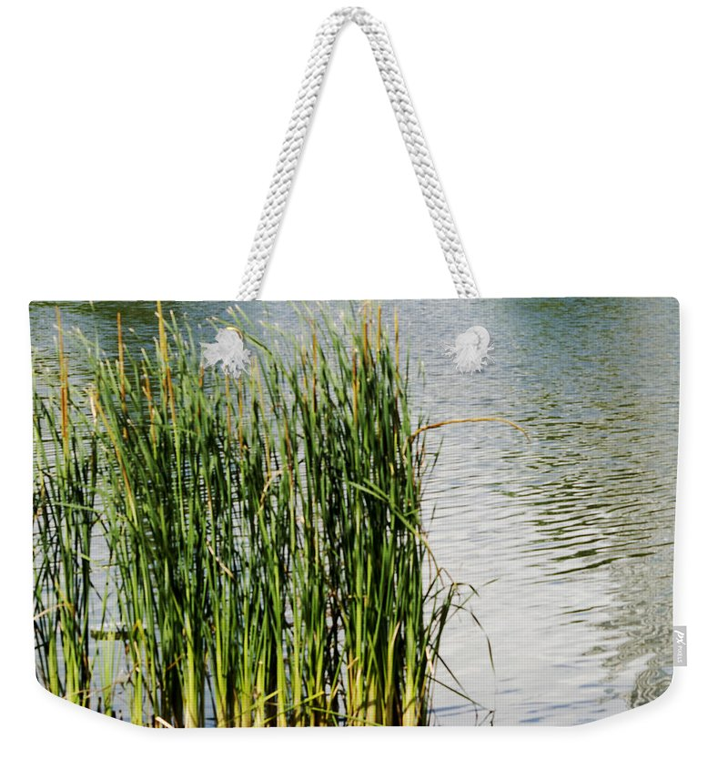 Austin Texas Weekender Tote Bag featuring the photograph Water Plants - Reed Reflections - Luther Fine Art by Luther Fine Art