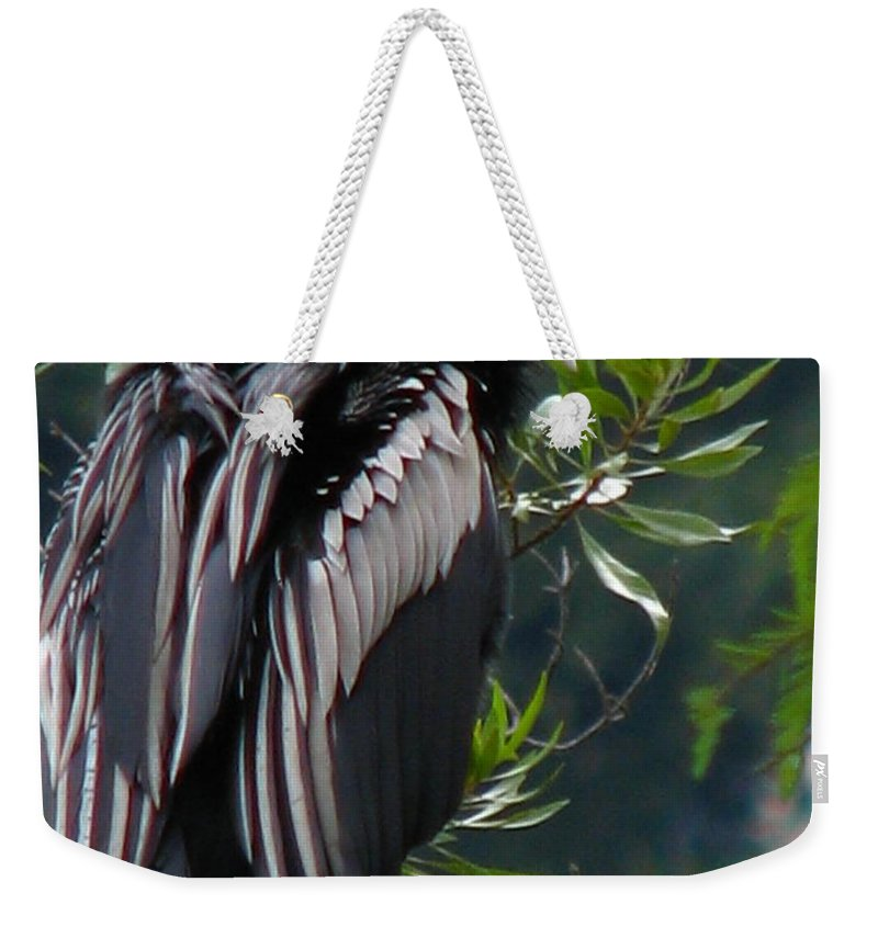 Patzer Weekender Tote Bag featuring the photograph Water Turkey by Greg Patzer