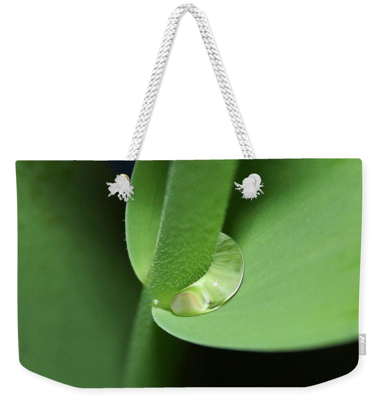 Fine Art Weekender Tote Bag featuring the photograph Water Worm by Linda Sannuti