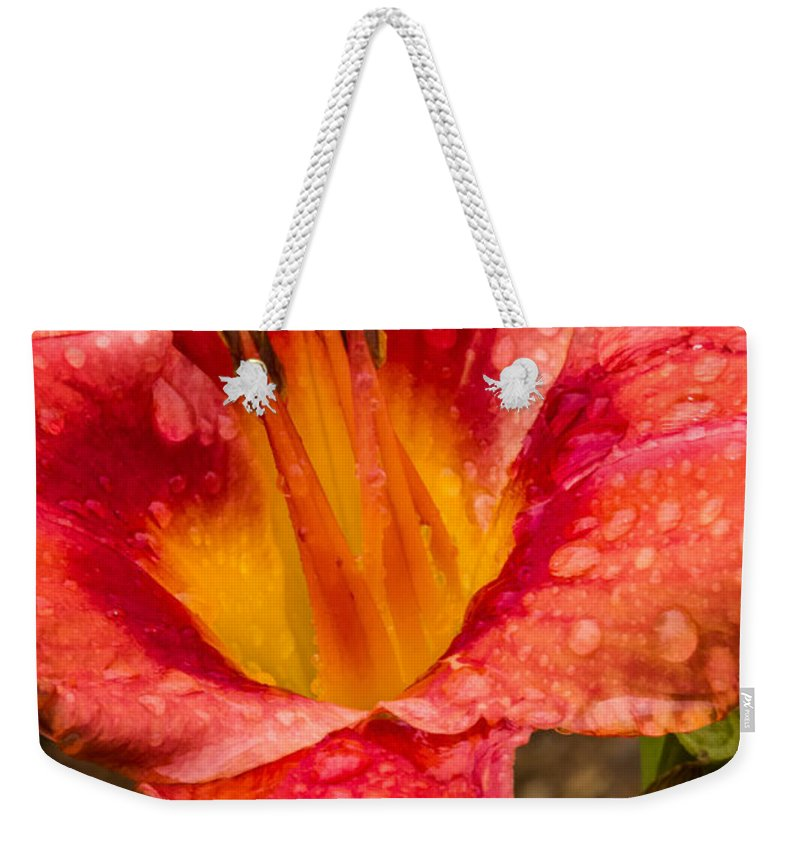 Lily Weekender Tote Bag featuring the digital art Watered Lily by Georgianne Giese