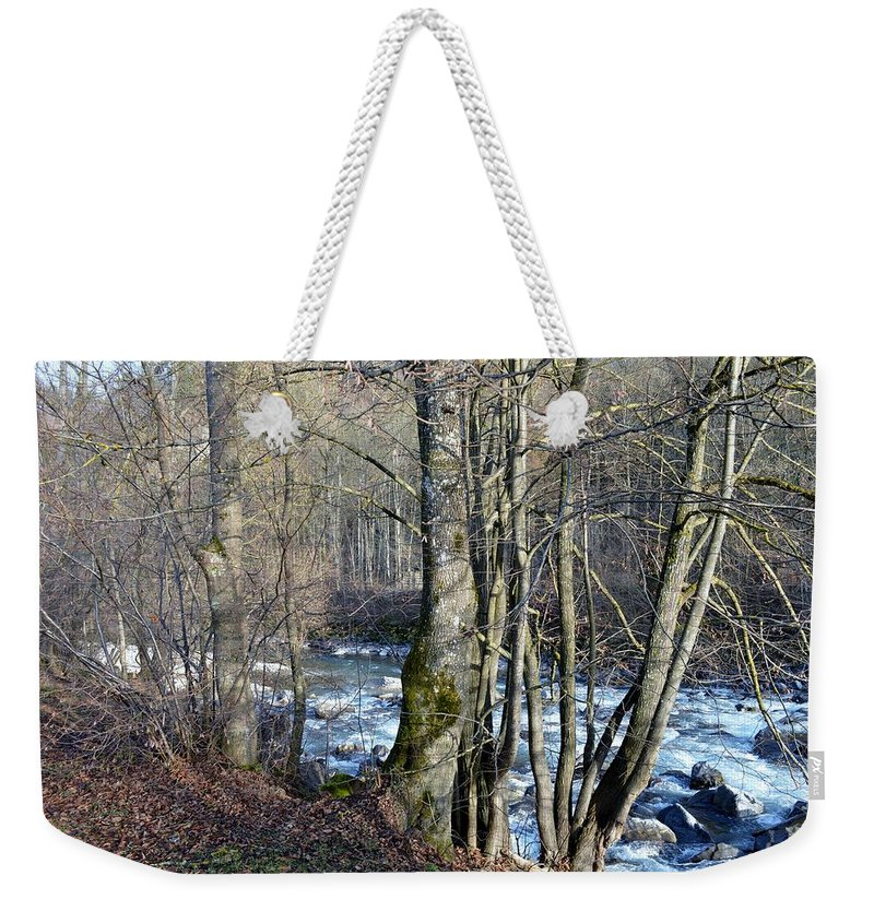 Landscape With Trees Weekender Tote Bag featuring the photograph Waterfall In Winter by Felicia Tica