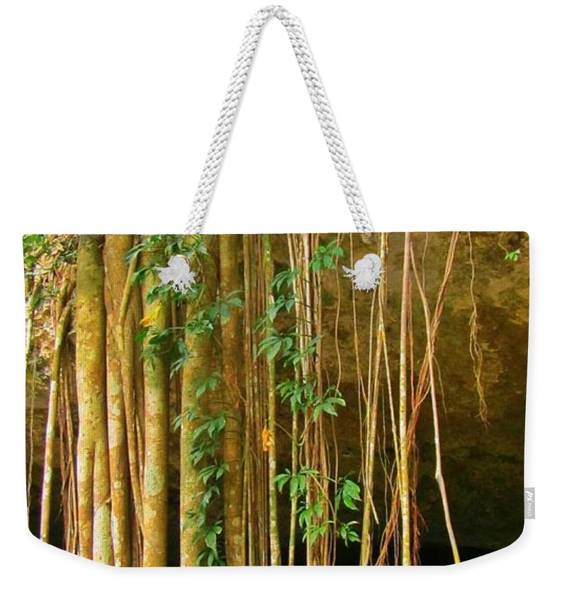 Waterfall Of Jungle Tree Roots Weekender Tote Bag featuring the photograph Waterfall Of Jungle Tree Roots by John Malone