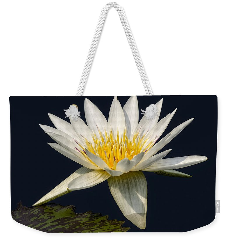 Leaves Weekender Tote Bag featuring the photograph Waterlily And Pad by Susan Candelario