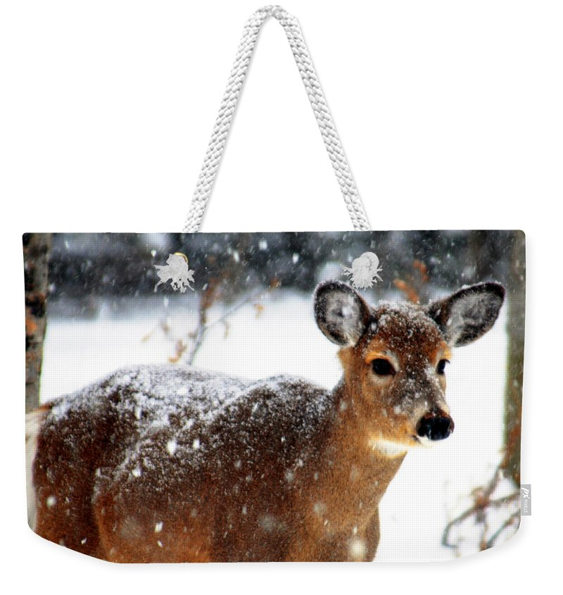 Optical Playground By Mp Ray Weekender Tote Bag featuring the photograph Weathering The Storm by Optical Playground By MP Ray