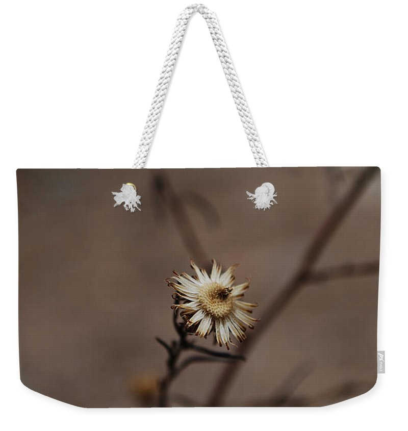 Becky Furgason Weekender Tote Bag featuring the photograph #weed by Becky Furgason