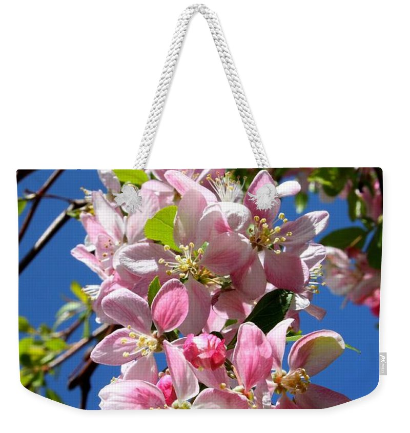 Weeping Cherry Tree Blossoms Weekender Tote Bag featuring the photograph Weeping Cherry Tree Blossoms by Carol Groenen