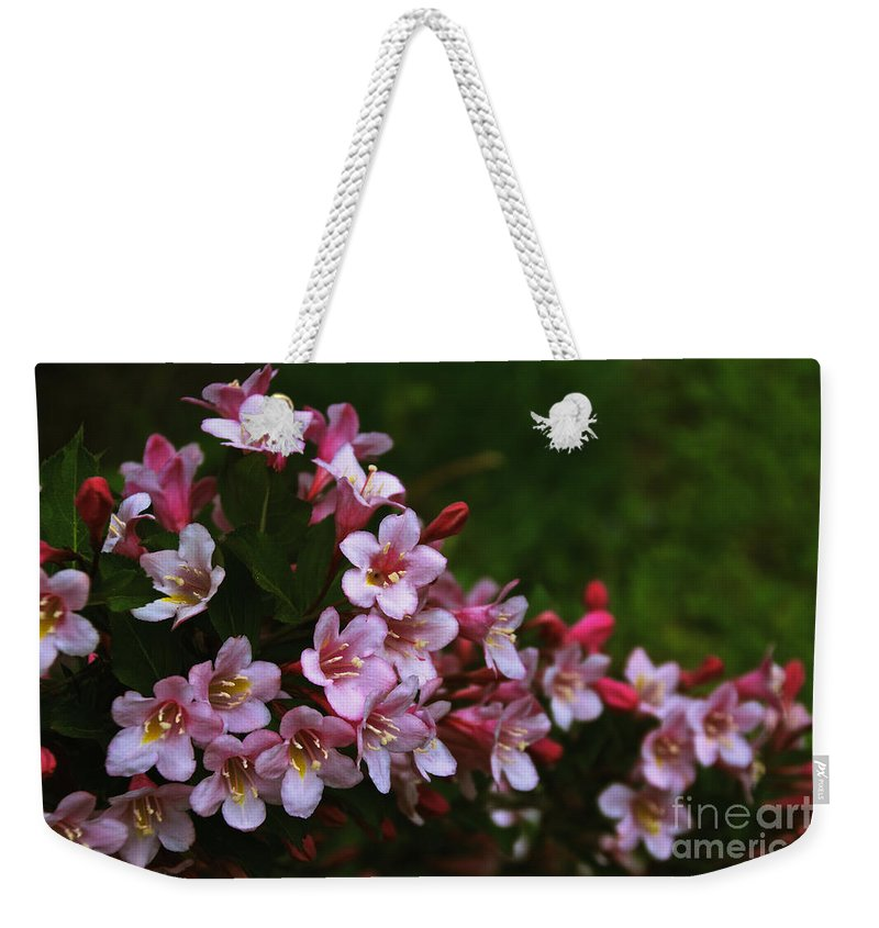 Weigela Weekender Tote Bag featuring the photograph Weigela Branch by William Norton