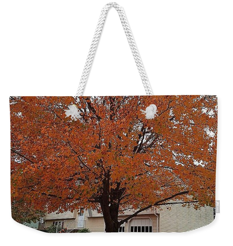 Tree Weekender Tote Bag featuring the photograph Welcome Fall by Saundra Myles