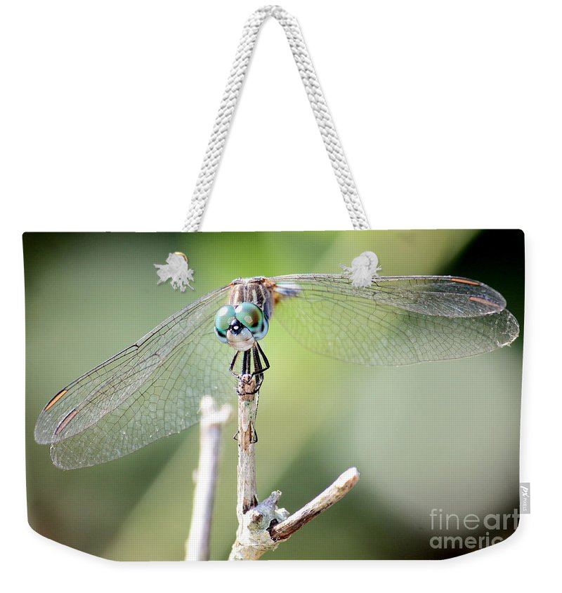 Macro Weekender Tote Bag featuring the photograph Welcome To My World Dragonfly by Carol Groenen