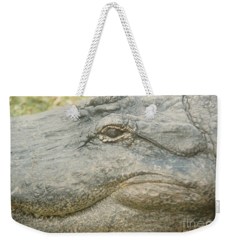Eyes Weekender Tote Bag featuring the photograph Well Hi There by Jeffery L Bowers
