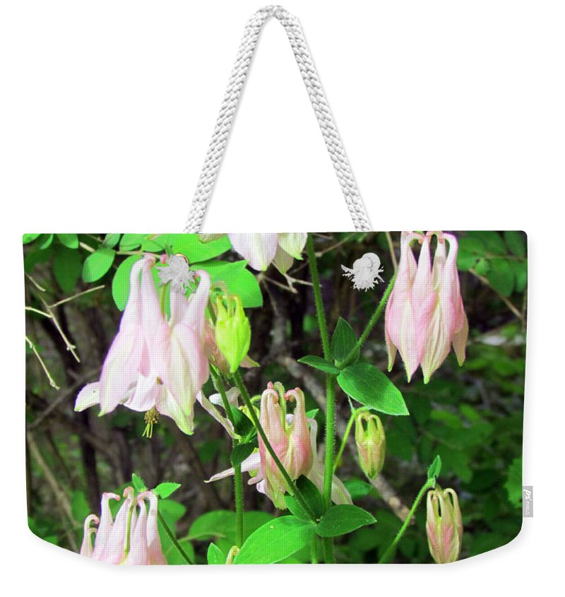 Elizabeth Dow Weekender Tote Bag featuring the photograph We're All In This Together by Elizabeth Dow