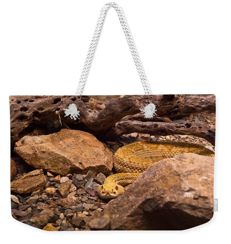 Rattlesnake Weekender Tote Bag featuring the photograph Western Diamondback Rattlesnake 2 by Douglas Barnett