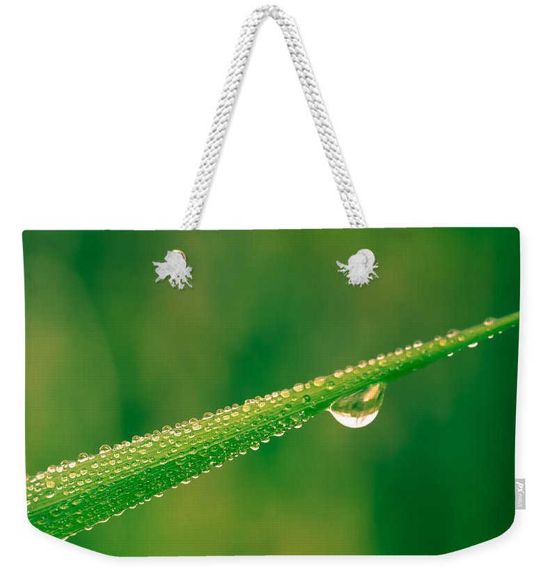 Blade Weekender Tote Bag featuring the photograph Wet Blade by Shane Holsclaw