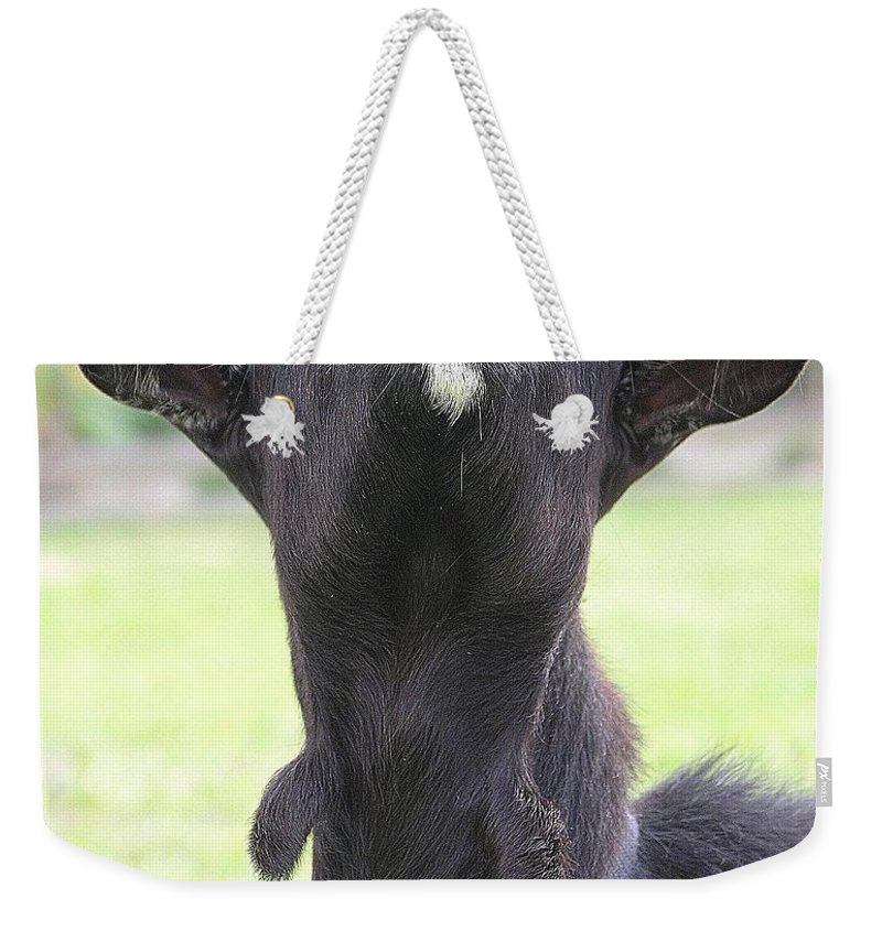 Goat Weekender Tote Bag featuring the photograph Whats Up by Mary Deal