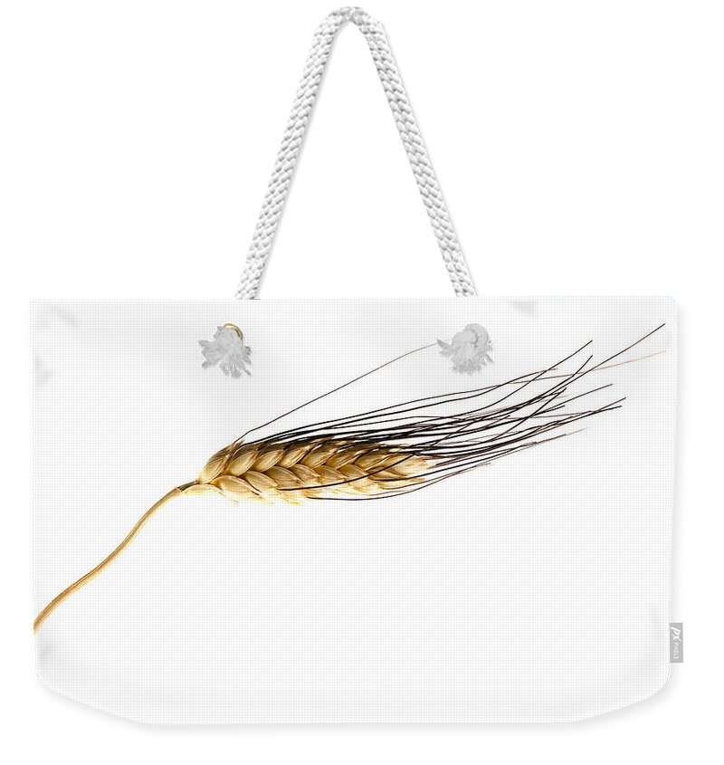 Wheat Weekender Tote Bag featuring the photograph Wheat On White by Carol Leigh