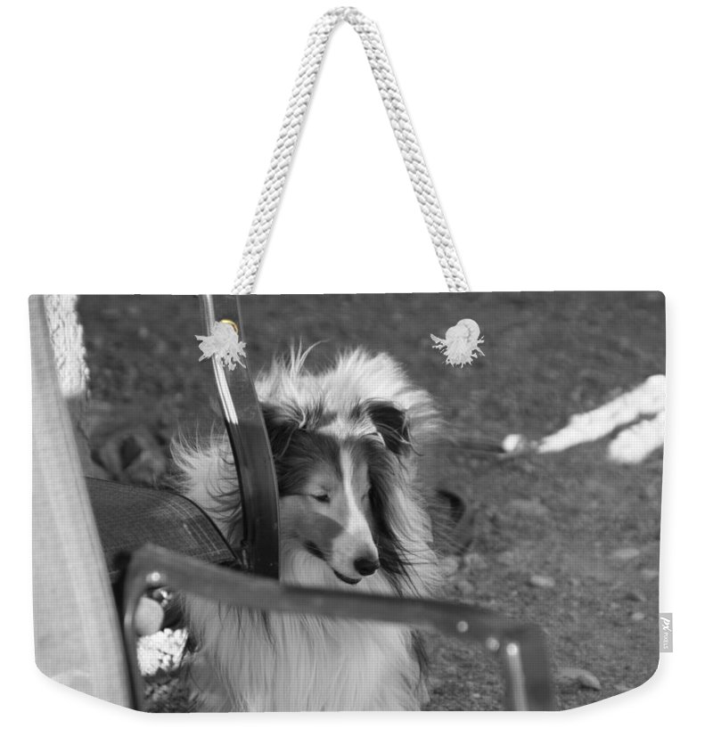 David S Reynolds Weekender Tote Bag featuring the photograph Wheeler by David S Reynolds