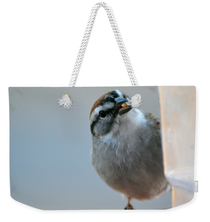 Red Weekender Tote Bag featuring the photograph Where Did All My Food Go? by Barb Dalton