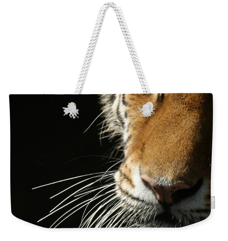 Tiger Weekender Tote Bag featuring the photograph Whiskers by Ernie Echols