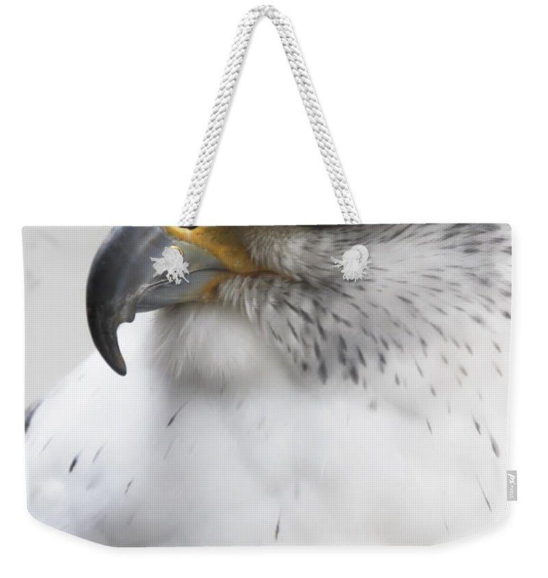 Gyrfalcon Weekender Tote Bag featuring the photograph White Arctic Falcon by Athena Mckinzie