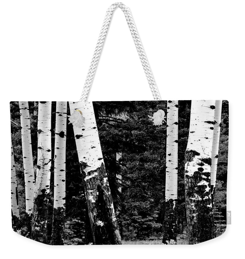 Digital Black And White Photo Weekender Tote Bag featuring the digital art White Bark Aspen Bw by Tim Richards
